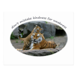 Don't mistake kindness for weakness postcard