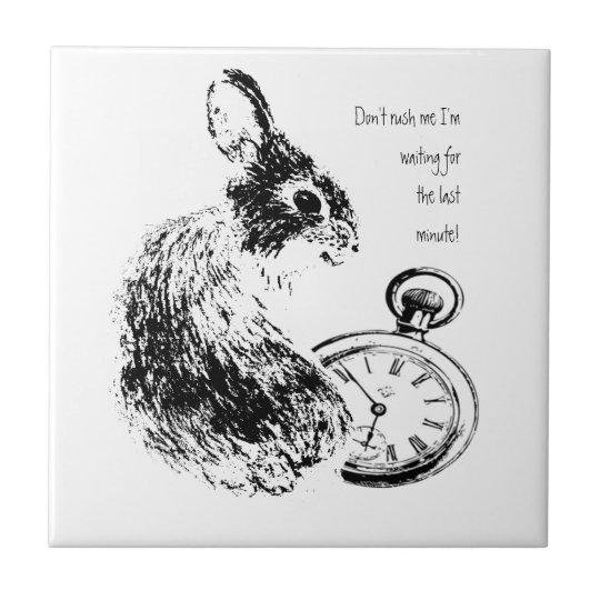 Don't Rush Me, Last Minute, Late Fun Rabbit