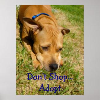 Don't Shop...Adopt Print