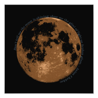 Don't tell me the moon is shining Chekhov quote Photo Print