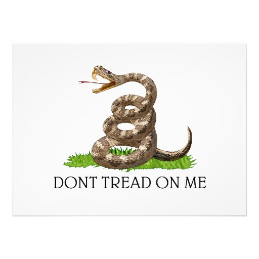 Dont Tread On Me Gadsden American Revolution Flag Photographic Print