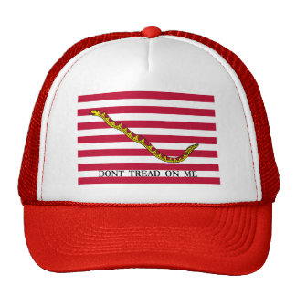 Don't Tread On Me Mesh Hat