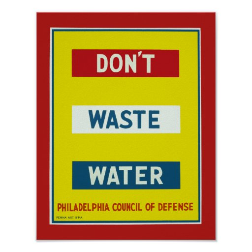 Don't Waste Water Poster