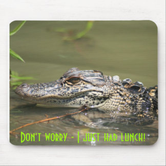 Don't worry - I just had lunch! Mouse Pad