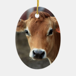 Don't you think I'm Pretty Jersey Cow Christmas Ornament
