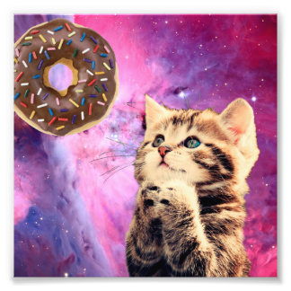 Donut Praying Cat Photo Print