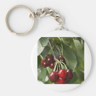 Door Country Cherries Basic Round Button Key Ring