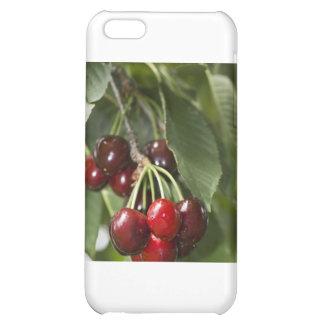 Door Country Cherries Case For iPhone 5C