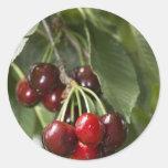Door Country Cherries Classic Round Sticker