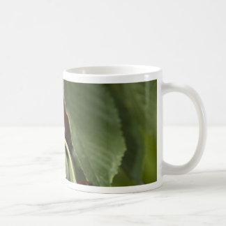 Door Country Cherries Coffee Mug