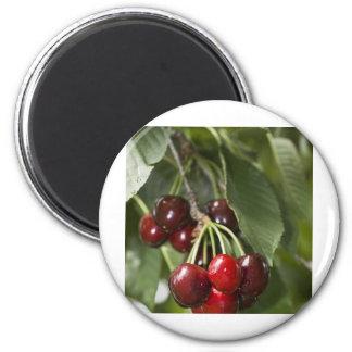 Door Country Cherries Fridge Magnet
