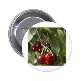 Door Country Cherries Pins