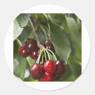 Door Country Cherries Round Sticker
