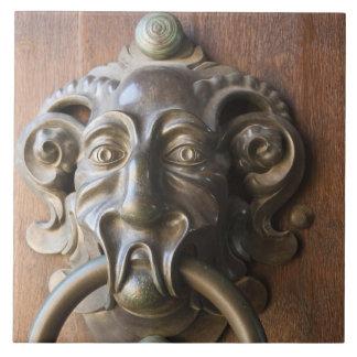 Door knocker at the Neue Residenz Tiles