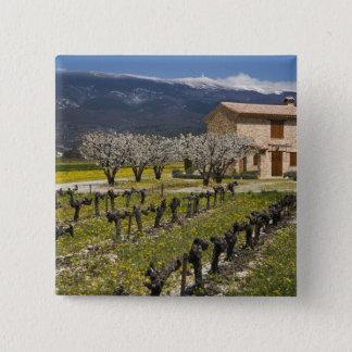 Dormant vineyard, fruit blossoms, stone house, 15 cm square badge