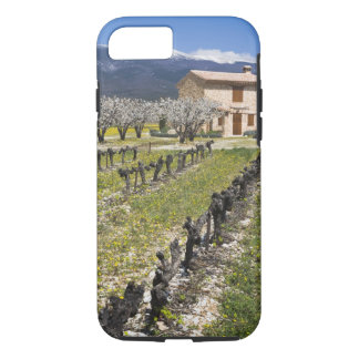 Dormant vineyard, fruit blossoms, stone house, iPhone 8/7 case