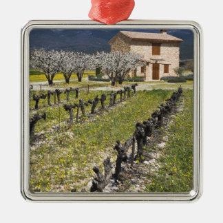 Dormant vineyard, fruit blossoms, stone house, Silver-Colored square decoration