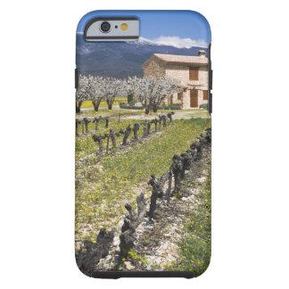 Dormant vineyard, fruit blossoms, stone house, tough iPhone 6 case