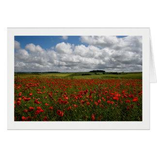 Dorset Red Poppy Field Card