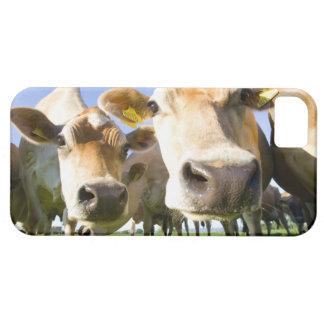 Dorset, UK Barely There iPhone 5 Case