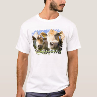 Dorset, UK T-Shirt