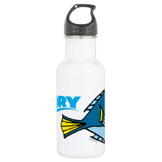 Dory Cartoon 532 Ml Water Bottle