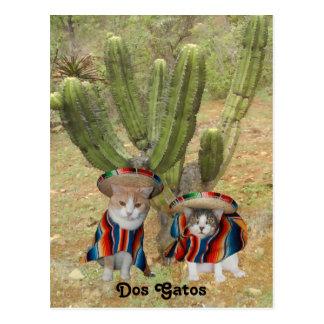 Dos Gatos Postcard