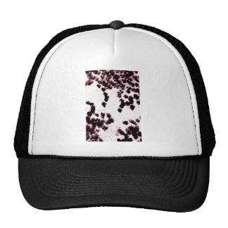 dotted on dry ground mesh hat