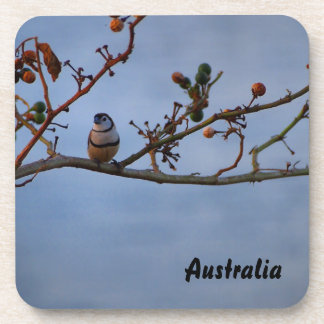 Double-barred finch on branch drink coaster set