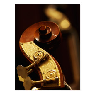 Double bass headstock 2 postcard