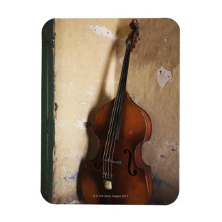 Double Bass Vinyl Magnet