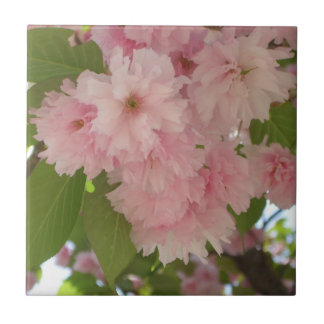 Double Blossoming Cherry Trees II Pink Spring Small Square Tile