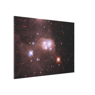 'Double Bubble' of Gas and Dust in the Large Magel Canvas Print