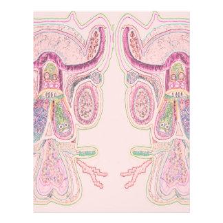 Double Bull Pink 21.5 Cm X 28 Cm Flyer