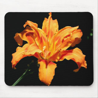 Double Day Lily Mouse Mat