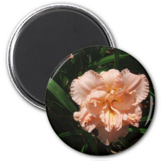 Double Daylily 6 Cm Round Magnet