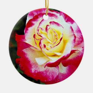 Double Delight Hybrid Tea Rose 'Andeli' White flow Christmas Ornament