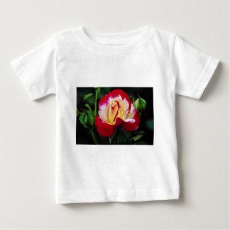 Double Delight Hybrid Tea Rose 'Andeli' White flow T-shirt