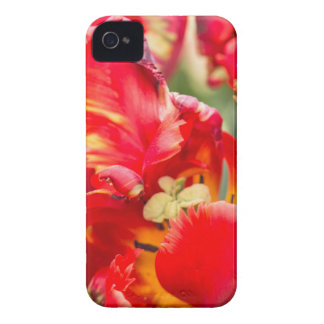 Double Frilly Tulip iPhone 4 Case-Mate Case