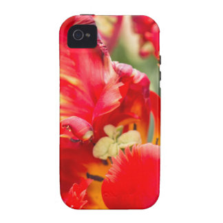 Double Frilly Tulip iPhone 4 Covers