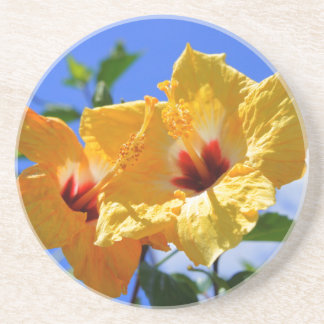 Double Hibiscus Coaster