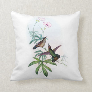 Double hummingbirds images cushion