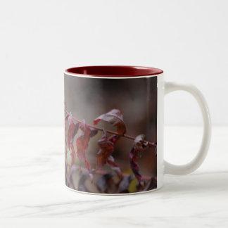 Double Image Two-Tone Mug