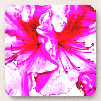 Double Pink Splash Azalea Blooms Beverage Coasters