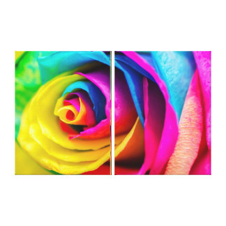 Double Rainbow Rose Canvas Print