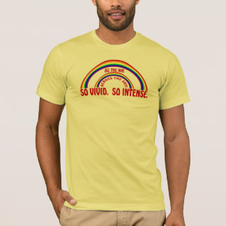DOUBLE RAINBOW - SO VIVID SO INTENSE T-Shirt