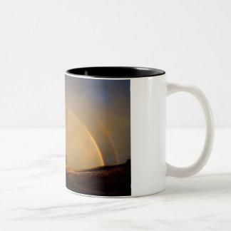 Double Rainbow Two-Tone Coffee Mug