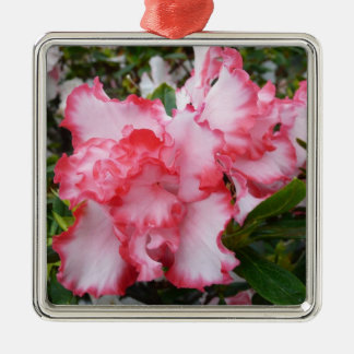 Double Red and White Azaleas Spring Floral Christmas Ornament