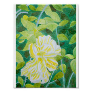 Double white hibiscus flower watercolor poster