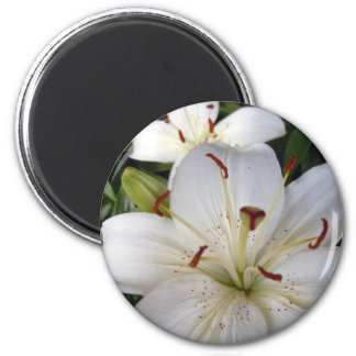 Double White Lilies 6 Cm Round Magnet